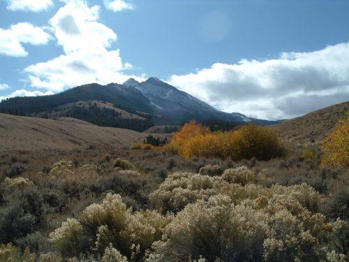Mahogany Creek diversion