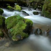 Idaho Water Quality: Antidegredation